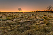 Rural Landscapes Photos - First Light by Bill  Wakeley