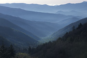 S Landscape Photography Posters - First Light on Clingmans Dome Poster by Sandra Bronstein