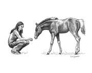 Horse Drawings Framed Prints - First Love Girl with Horse Foal Framed Print by Renee Forth Fukumoto
