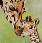 Mother And Baby Giraffe Paintings - First Love by Susan Duxter