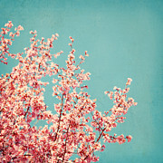 Blooming Trees Posters - First Sign of Spring Poster by Kim Fearheiley
