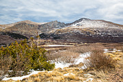 Bierstadt Photo Metal Prints - First Snow at Treeline Metal Print by Adam Pender
