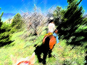 Expressionist Equine Prints - First Trail Ride-Digital Sketch Print by Lenore Senior and Juel Trask