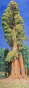 Sequoia Paintings - First Tree on Big Trees Trail by Joy Collier