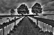 Senseless Framed Prints - First World War Graves Framed Print by Colin Woods
