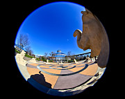 Chattanooga Photos - Fish Eye View of Coolidge Park by Tom and Pat Cory