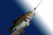 Carp Digital Art - Fish Mount Set 13 B by Thomas Woolworth
