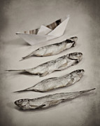 Conceptual Art Framed Prints - Fish out of water Framed Print by Diana Kraleva