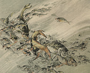 Japan Drawings - Fishes by Jules-Auguste Habert-Dys
