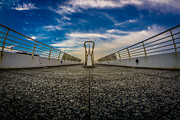 Fisheye Prints - Fisheye Calatrava Bridge Print by Randy Scherkenbach
