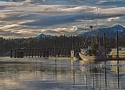 Boats At Dock Prints - Fishing boat Christmas tree Print by Timothy Latta