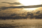 Roger Lewis Prints - Fishing Boat in the Bay Vapor Sunrise Print by Roger Lewis