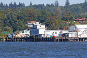 Tom Janca - Fishing Docks On Puget...