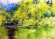 Waterside Paintings - Fishing pond by Celine  K Yong