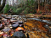 Saluda Photos - Fishing the Middle Saluda by Mark Wickham