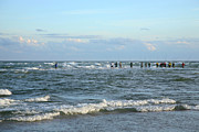 Suzi Nelson Metal Prints - Fishing The Point at Cape Hatteras Metal Print by Suzi Nelson