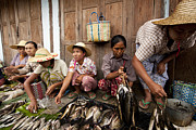 Fishmongers Prints - Fishmonger in Nyaung Shwe Market Print by Ruben Vicente