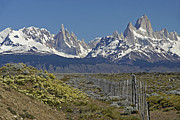 Fitz Art - Fitz Roy Range in Springtime 1 by Michele Burgess