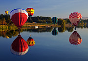 Hot Air Balloons Framed Prints - Five Aloft Framed Print by Mike  Dawson