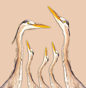 Heron Portrait Posters - Five Herons Poster by East Coast Barrier Islands Betsy A Cutler