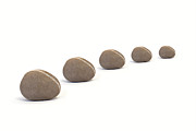 Neutral Colours Framed Prints - Five Queuing Pebbles against White Background Framed Print by Natalie Kinnear