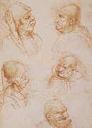 Faces Drawings Framed Prints - Five Studies of Grotesque Faces Framed Print by Leonardo da Vinci