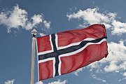 Fluttering Posters - Flag Of Norway Poster by Steve Purnell