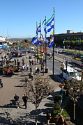 Bay Bridge Prints - Flags At Pier 39 San Francisco California 5D26041 Print by Wingsdomain Art and Photography