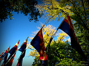 Prescott Photos - Flags of Autumn by Aaron Burrows