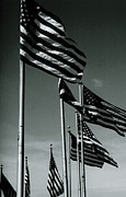 Dc-9 Framed Prints - Flags of Freedom Framed Print by Peter Viteritti