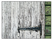 Decayed Barn Framed Prints - Flaking Paint on Barn Door Framed Print by Michel Godts