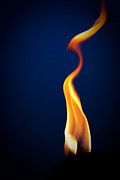Gold Art Prints - Flame Print by Darryl Dalton