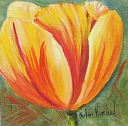 """texas Artist"" Originals - Flame Tulip by Barbara Haviland by Barbara Haviland"