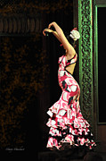 Ruffled Dress Framed Prints - Flamenco Series #8 Framed Print by Mary Machare