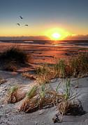 Dan Carmichael - Flaming Dunes of Sand -...