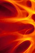 Tam Ryan - Flaming Lights