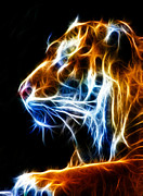 Fractalius Mixed Media Framed Prints - Flaming Tiger Framed Print by Shane Bechler
