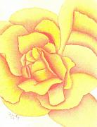 Burnt Drawings Posters - Flaming Yellow Rose Poster by Dusty Reed