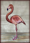 Flamingo Paintings - Flamingo 1 by Walt Foegelle