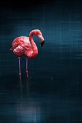 Flamingo - Blue Print by Hannes Cmarits
