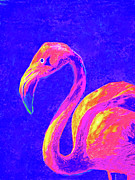 Flamingo Art Prints - Flamingo Print by Jane Schnetlage