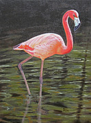 Flamingo Paintings - Flamingo on Parade by Jimmie Bartlett