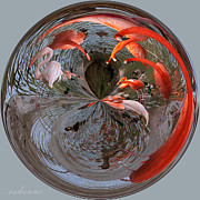Chanda Henne Posters - Flamingo Orb Poster by Chanda Henne