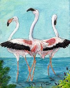 Trio Posters - Flamingo Trio Dance Tropical Bird Art Peek Poster by Cathy Peek