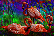 Jack Zulli - Flamingo Trio II