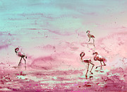 Miki De Goodaboom - Flamingos in Camargue 03