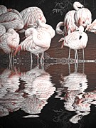 Flamingo Prints - Flamingos Print by Sharon Lisa Clarke