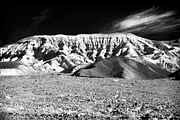 Southwest Landscape Metal Prints - Flap Top at Death Valley Metal Print by John Rizzuto