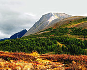 Alaska Prints Photos - Flat Top Mountain Autumn by Dianne Roberson