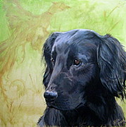 Gold Labrador Paintings - Flatcoat by Kelci Pauk